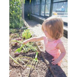 Bigjigs Toys Zahradní set nářadí zelený 3ks