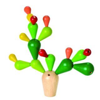 Balancující kaktus